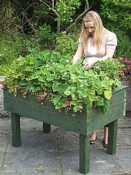 Raised Bed Table